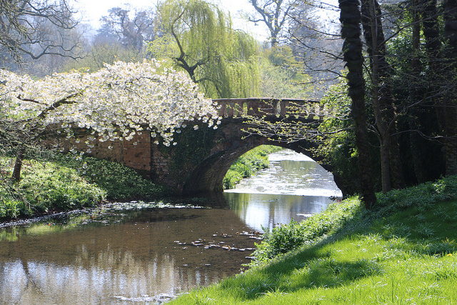 Minterne Gardens bridge
