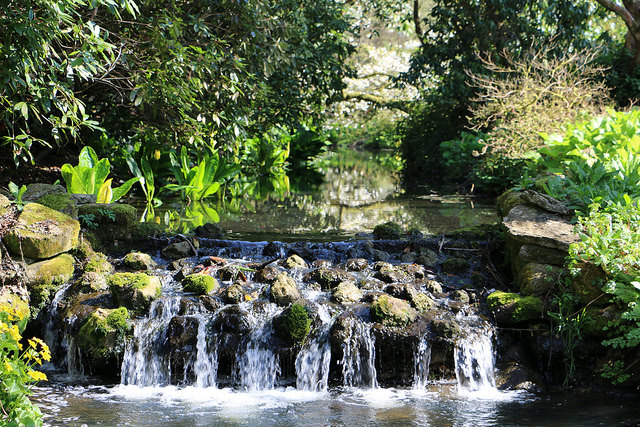 Minterne Gardens cascade