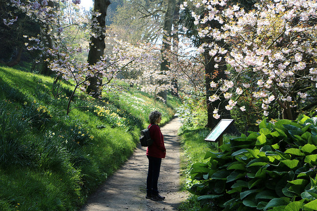 Minterne Gardens footpath